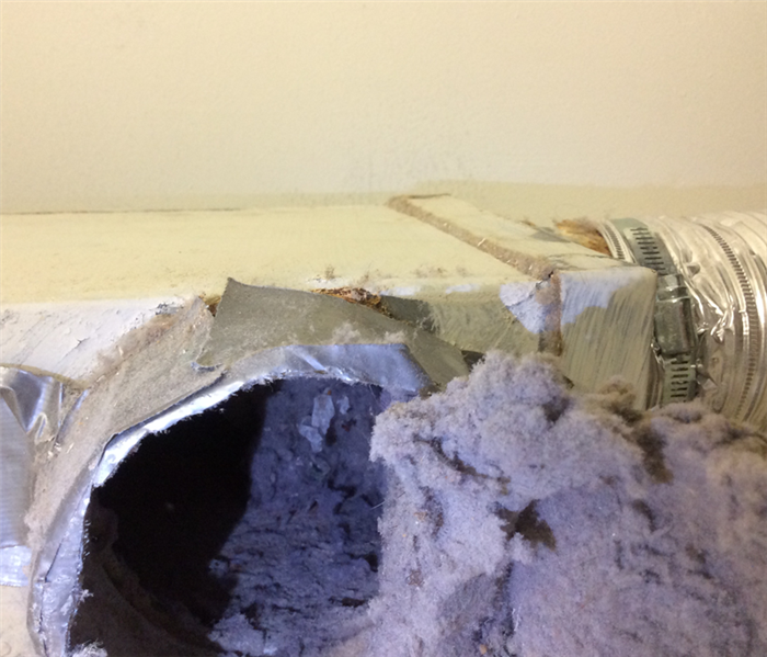 Dryer Duct Lint