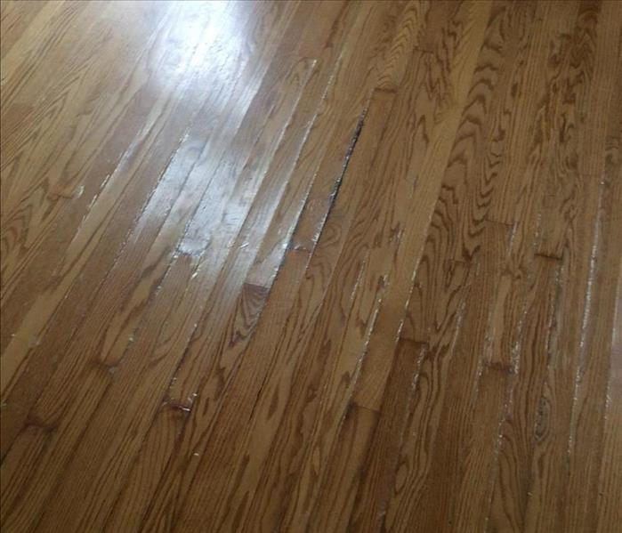 Water Damage Buckled Oak Floor