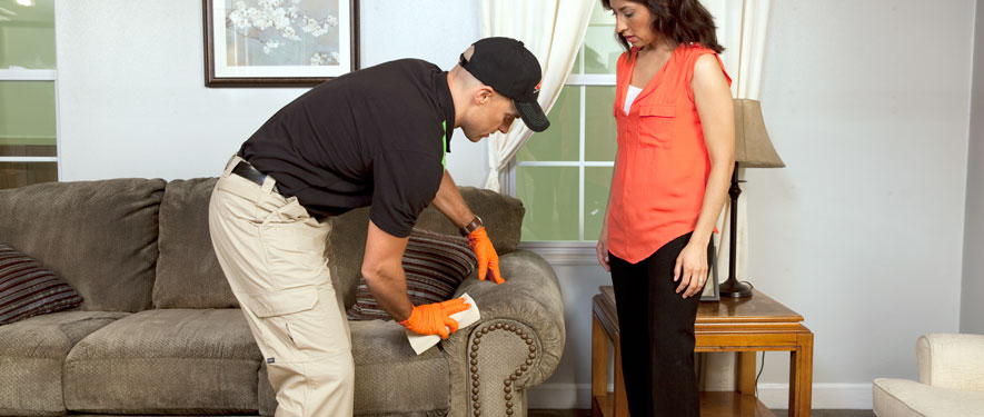 Carbondale, PA carpet upholstery cleaning